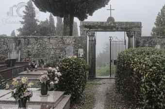 A Dawn Stroll With the Spirits of Castelvecchio