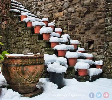 Winter Wonderland in Images