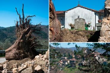 Ferocious Wind Disturbs Restful Peace in Aramo